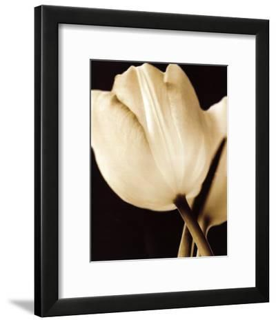 Radiance I-Cinzia Ryan-Framed Art Print
