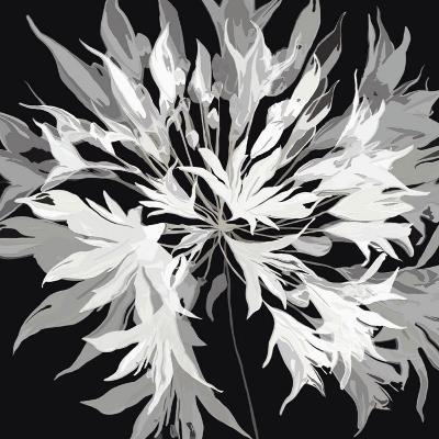 Radiance I-Sally Scaffardi-Art Print