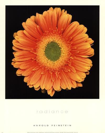 Radiance-Harold Feinstein-Art Print