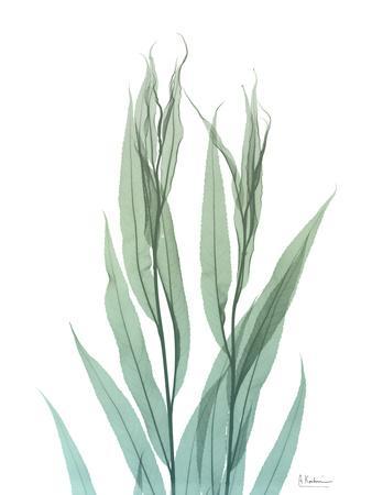 https://imgc.artprintimages.com/img/print/radiant-bamboo-leaf-2_u-l-pyjvw30.jpg?p=0