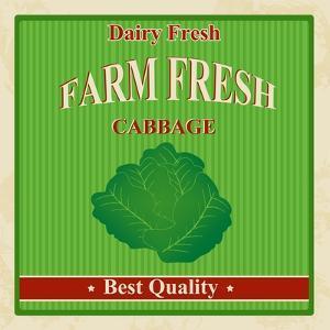 Vintage Farm Fresh Cabbage Poster by radubalint