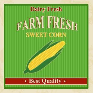 Vintage Farm Fresh Sweet Corn Poster by radubalint