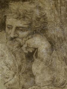 Etude de la tête de saint Joseph, pour la Sainte Famille de François Ier by Raffaello Sanzio