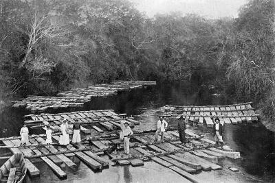 Rafts on the Tebicuary-Mi River, Paraguay, 1911--Giclee Print