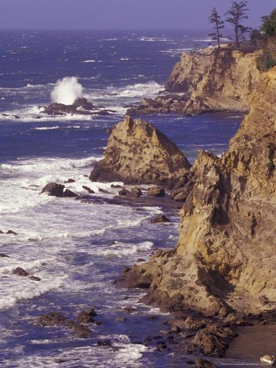 Ragged Coastline near Coos Bay, Oregon, USA-Adam Jones-Photographic Print