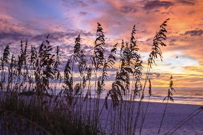 Ragged Sunrise III-Alan Hausenflock-Photographic Print