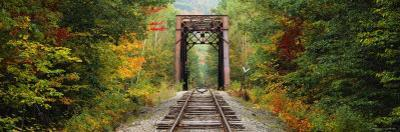Railroad Track Passing Through a Forest, White Mountain National Forest, New Hampshire, USA