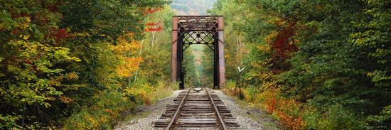 Railroad Track Passing Through A Forest White Mountain