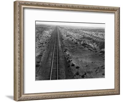 Railroad Tracks, 1939-Dorothea Lange-Framed Giclee Print