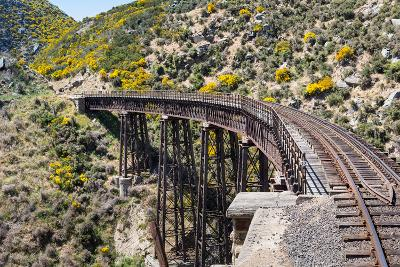 Railway Bridge on Taieri Gorge New Zealand-BackyardProductions-Photographic Print