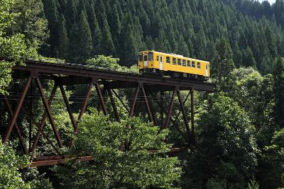 Railway-Kakki**-Photographic Print