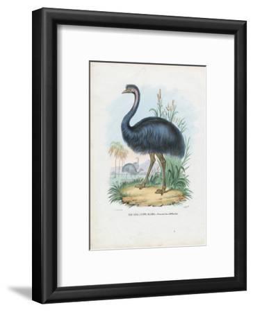 Emu, 1863-79