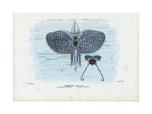 Sea Butterflies, 1863-79 by Raimundo Petraroja