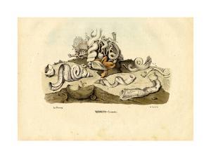 Worm Snails, 1863-79 by Raimundo Petraroja
