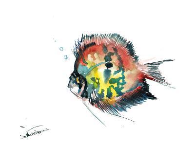 Rainbow Discus-Suren Nersisyan-Art Print