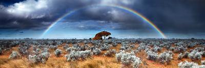 Rainbow in the Australian Desert-kwest19-Photographic Print
