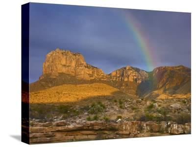 Rainbow near El Capitan, Guadalupe Mountains National Park, Texas-Tim Fitzharris-Stretched Canvas Print
