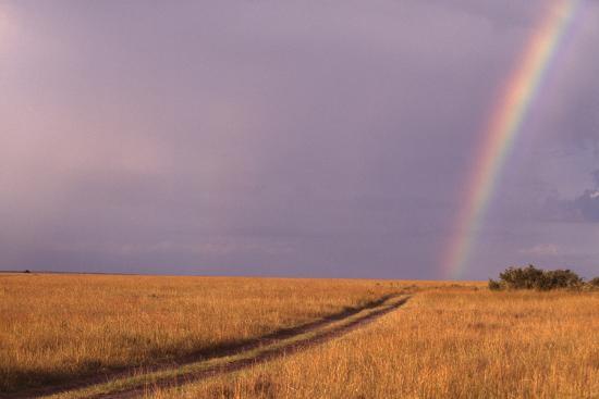 Rainbow on the Savanna-DLILLC-Photographic Print