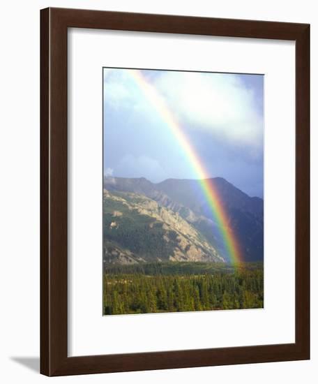 Rainbow over Forest, Alaska-Nick Norman-Framed Photographic Print