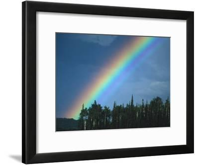 Rainbow over Forest, British Columbia, Canada-Nick Norman-Framed Photographic Print