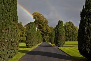 Rainbow over the Yew Walk in Emo Court Gardens,Emo Village, County Laois, Ireland