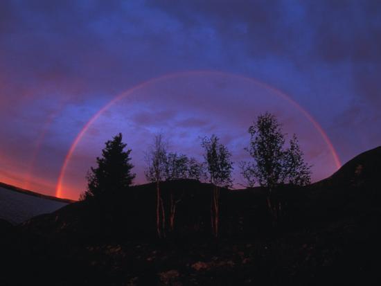 Rainbow over Trees, Northwest Territories, Canada-Nick Norman-Photographic Print