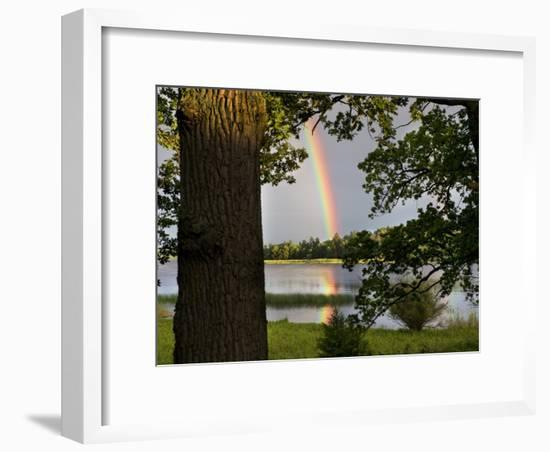 Rainbow over Water and Forest in the Summer-Mattias Klum-Framed Photographic Print