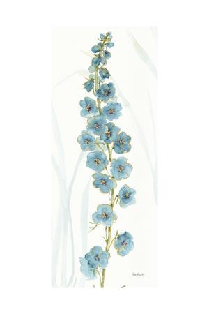 Rainbow Seeds Flowers VI-Lisa Audit-Art Print