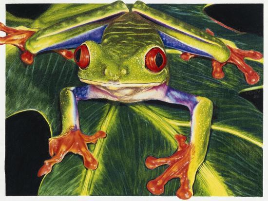 Rainbow Splendor-Barbara Keith-Giclee Print