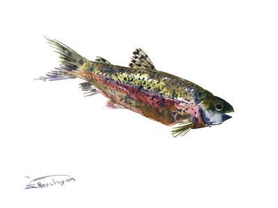 Rainbow Trout-Suren Nersisyan-Art Print