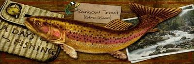 Rainbow Trout-Kate Ward Thacker-Giclee Print