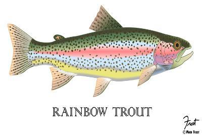 Rainbow Trout-Mark Frost-Giclee Print