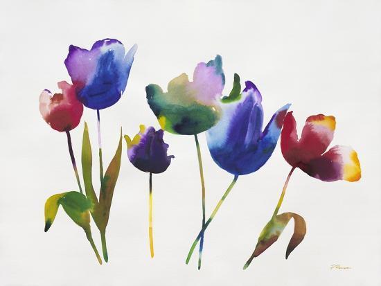 Rainbow Tulips 2-Paulo Romero-Premium Giclee Print