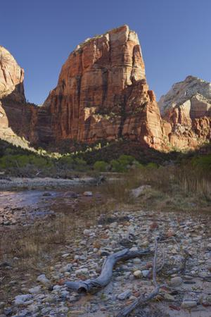 Angels Landing, Zion National Park, Utah, Usa by Rainer Mirau
