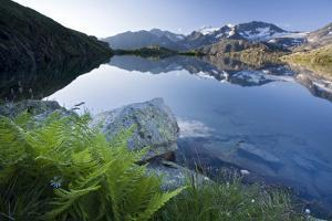 Austria, Tyrol, Stubai Alps, Mutterberg-See, ZuckerhŸtl, Mountain Scenery by Rainer Mirau