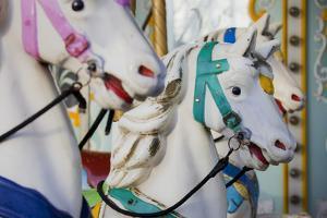 France, Paris, Jardin of the Tuileries, Roundabout, Horses, Detail by Rainer Mirau