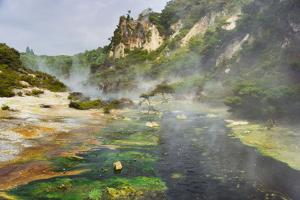 Hot Springs, Waimangu Volcanic Valley, Rotorua, Bay of Plenty, North Island, New Zealand by Rainer Mirau