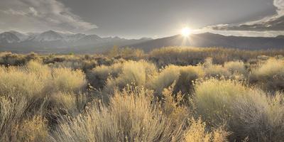 Owens River Valley, Sierra Nevada, California, Usa