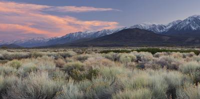 Owens River Valley, Sierra Nevada, California, Usa by Rainer Mirau