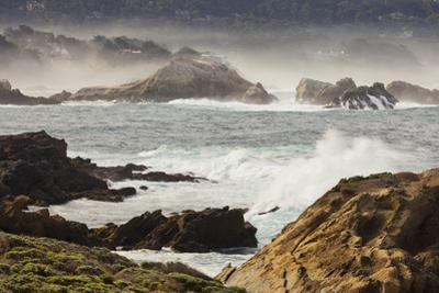 Rock Coast Near Point Lobos State Natural Reserve, Carmel by the Sea, California, Usa by Rainer Mirau