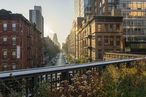 The High Line Park, Manhattan, New York by Rainer Mirau