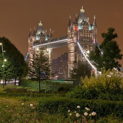 Tower Bridge, in the Evening, London, England, Great Britain by Rainer Mirau