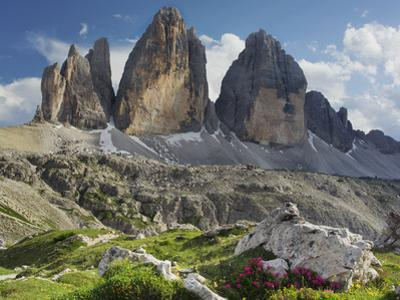 Tre Cime Di Lavaredo (Three Merlons), Meadow, South Tyrol by Rainer Mirau