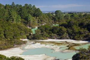 Wai-O-Tapu Thermal Wonderland, Bay of Plenty, North Island, New Zealand by Rainer Mirau