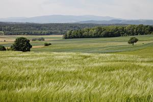 Landscape, Southern Burgenland, Austria by Rainer Schoditsch