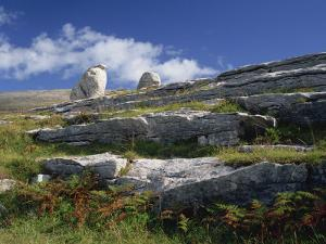 Rock Formations of the Burren, County Clare, Munster, Republic of Ireland, Europe by Rainford Roy