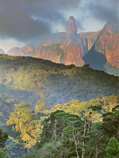 Rainforest and Granite Mountains, Serra Dos Orgaos National Park, Brazil-Frans Lanting-Photographic Print