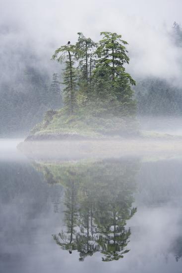 Rainforest Islands in Fog in Alaska-Paul Souders-Photographic Print