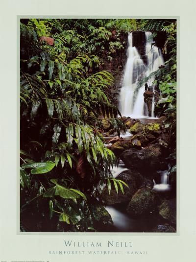 Rainforest Waterfall, Hawaii-William Neill-Art Print