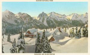 Rainier National Park in Winter, Washington